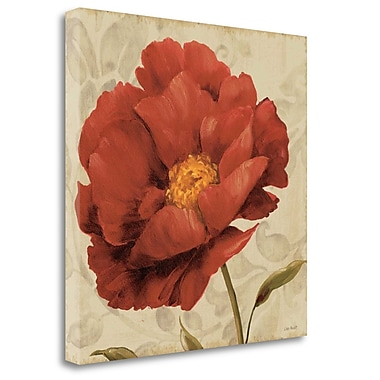 Tangletown Fine Art 'Floral Romance I C' Print on Wrapped Canvas; 20'' H x 20'' W