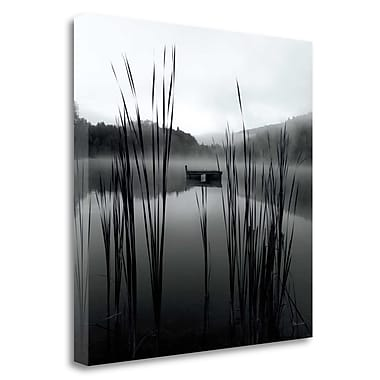 Tangletown Fine Art 'Through The Reeds At Dawn' Photographic Print on Canvas; 35'' H x 35'' W