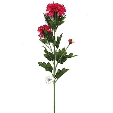 August Grove Crysanthumum Flower (Set of 12)