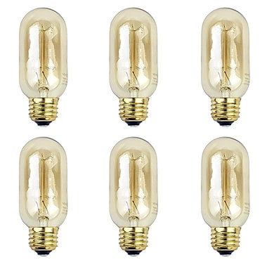 Newhouse Lighting G25 Incandescent Thomas Edison Vintage Filament Light Bulb, 6-Pack (T45INC-6)