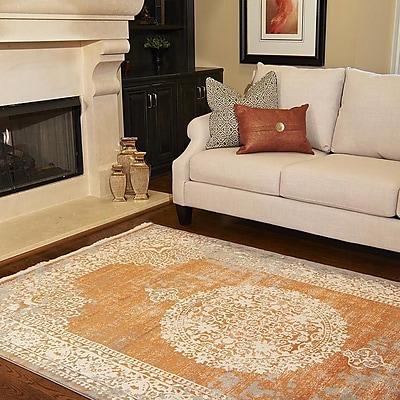 World Menagerie Colebrook Orange Area Rug; 8' x 10'