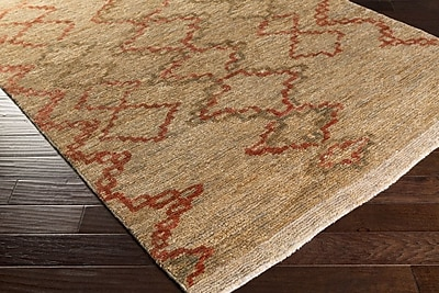 Bungalow Rose Amsbry Hand-Knotted Brown/Red Area Rug; Rectangle 4' x 6'