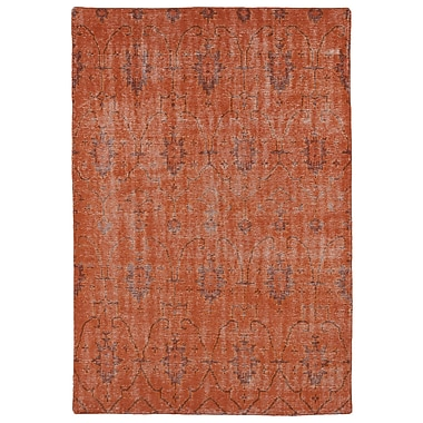 Bungalow Rose Koh Pumpkin Area Rug; 4' x 6'