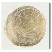 Bungalow Rose Cuore Di Legno II Graphic Art on Wrapped Canvas (Set of 100); 43'' H x 43'' W