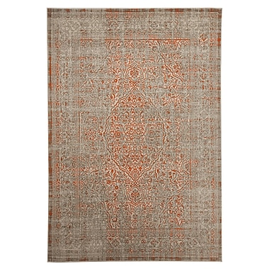 Bungalow Rose Abel Gray/Orange Area Rug; 5'3'' x 7'6''