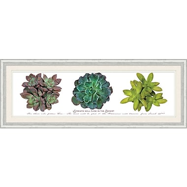 Bungalow Rose 'Streams Will Flow Succulent' Framed Graphic Art Print on Paper