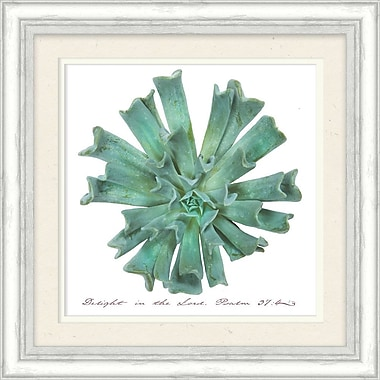 Bungalow Rose 'Delight In The Lord Succulent' Framed Graphic Art Print on Paper