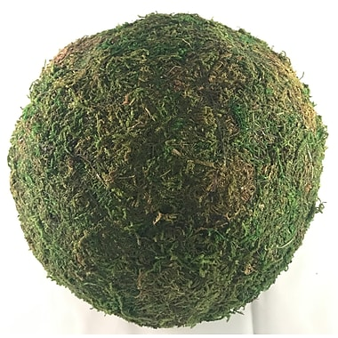 Ophelia & Co. Cottage Moss Ball Sculpture