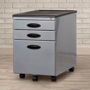 Varick Gallery Feltonville 3 Drawer Filing Cabinet; Silver/Black