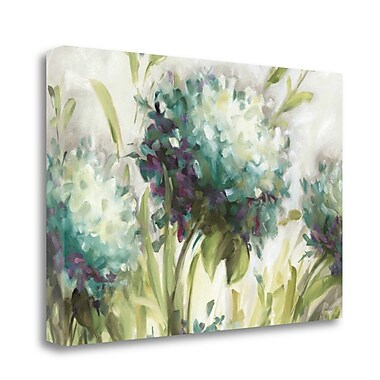 Tangletown Fine Art 'Hydrangea Field' Print on Wrapped Canvas; 16'' H x 24'' W