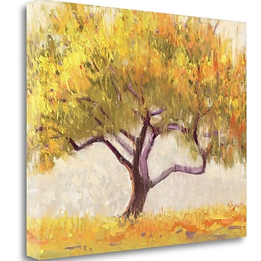 Tangletown Fine Art 'Apricot Tree' Print on Wrapped Canvas; 21'' H x 26'' W
