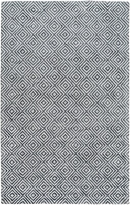Varick Gallery Warmley Hand Woven Gray Area Rug; 4' x 6'