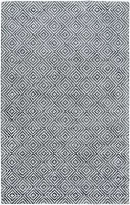 Varick Gallery Warmley Hand Woven Gray Area Rug; 2' x 3'