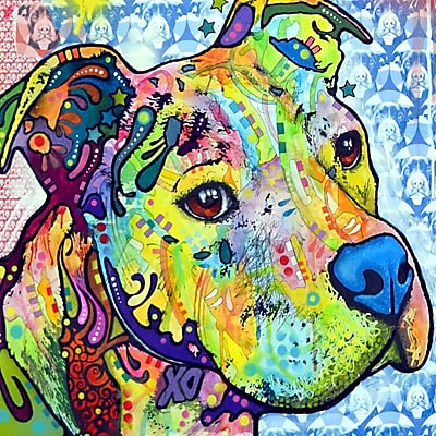 Varick Gallery Thoughtful Pit Bull This Years I Graphic Art on Wrapped Canvas