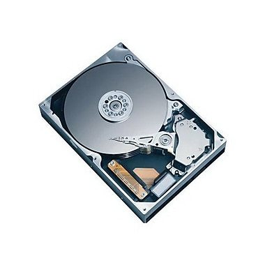 HGST® Deskstar® 7K1000 0A34915 1TB SATA 3 Gbps 3 1/2