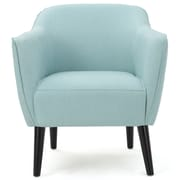 Varick Gallery Aurianna Club Chair; Light Blue