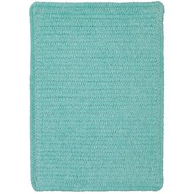 Varick Gallery Yonkers Island Blue Solid Rug; 10' x 14'