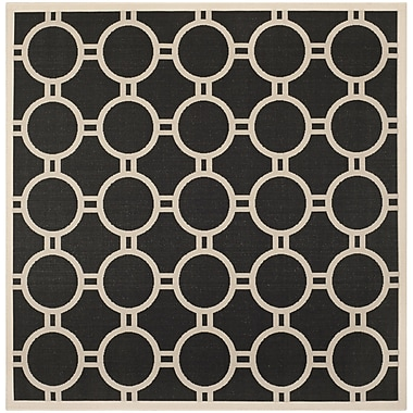 Varick Gallery Jefferson Place Black/Beige Outdoor Rug; Square 7'10''
