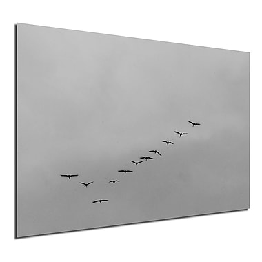 Varick Gallery 'Formation' Graphic Art Print; 16'' H x 20'' W x 1'' D