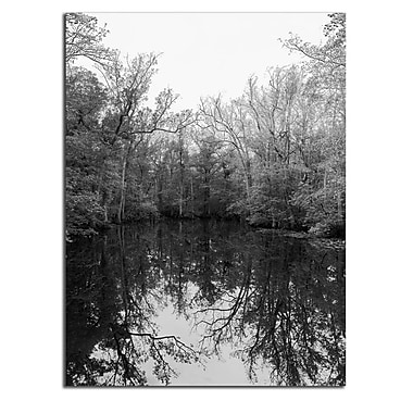 Varick Gallery 'Reflection' Photographic Print; 20'' H x 16'' W x 1'' D