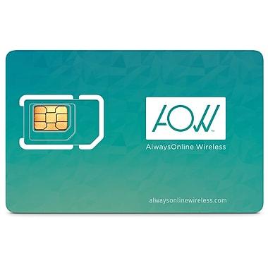 AlwaysOnline Wireless – Carte SIM de données mondiales, données LTE 4 G, 90+ pays (502)