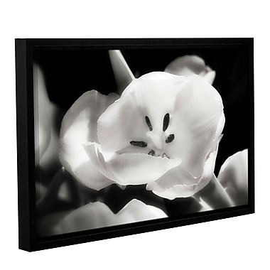 Varick Gallery 'Tulip Harmony II' Framed Graphic Art Print on Canvas; 8'' H x 12'' W x 2'' D
