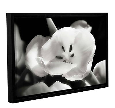Varick Gallery 'Tulip Harmony II' Framed Graphic Art Print on Canvas; 32'' H x 48'' W x 2'' D