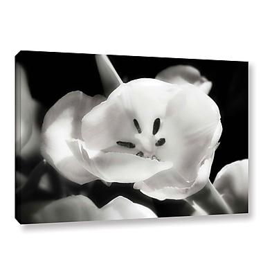 Varick Gallery 'Tulip Harmony II' Photographic Print on Canvas; 16'' H x 24'' W x 2'' D
