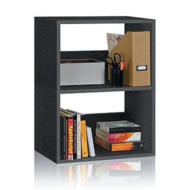 Varick Gallery Andrade Duplex 30'' Cube Unit Bookcase; Black