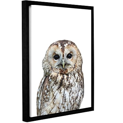 Varick Gallery 'Owl' Framed Photographic Print on Canvas; 10'' H x 8'' W x 2'' D