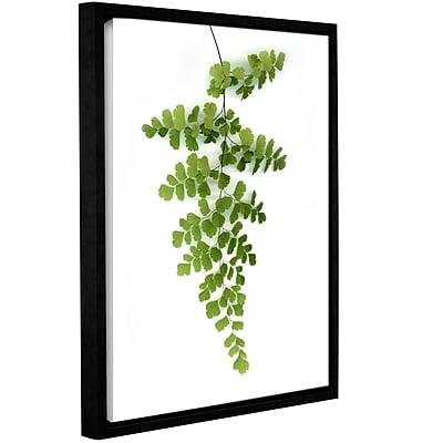 Varick Gallery 'Green Maidenhair' Framed Photographic Print on Canvas; 10'' H x 8'' W x 2'' D