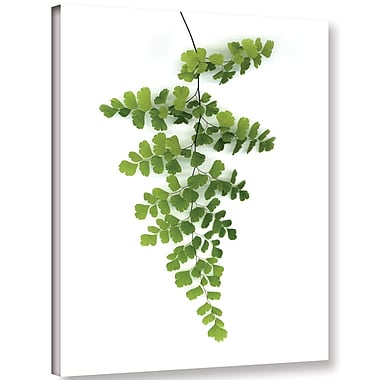 Varick Gallery 'Green Maidenhair' Photographic Print on Canvas; 10'' H x 8'' W x 2'' D