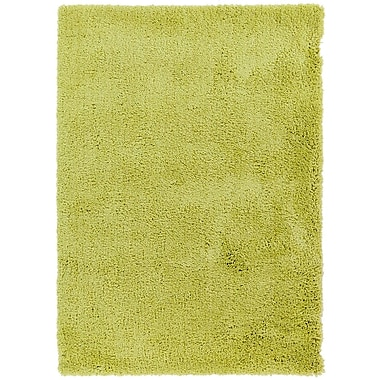 Varick Gallery Hallum Limeade Rug; 2' x 3'