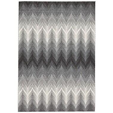Varick Gallery Crespo Ash/White Area Rug; 10' x 13'2''