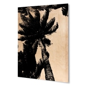 Varick Gallery 'Palm Trees' Rectangle Graphic Art Print on Wood; 20'' H x 16'' W