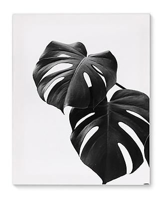 Varick Gallery 'Monstera' Photographic Print on Canvas; 36'' H x 24'' W