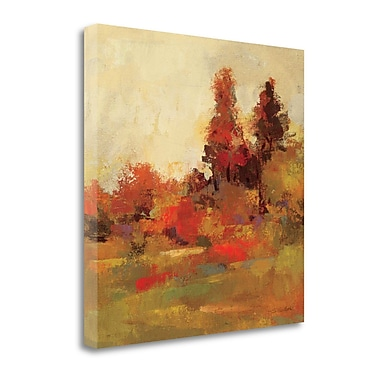 Tangletown Fine Art 'Fall Forest IV' Print on Canvas; 20'' H x 20'' W