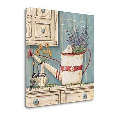 Tangletown Fine Art 'Herbs' Print on Canvas; 30'' H x 30'' W