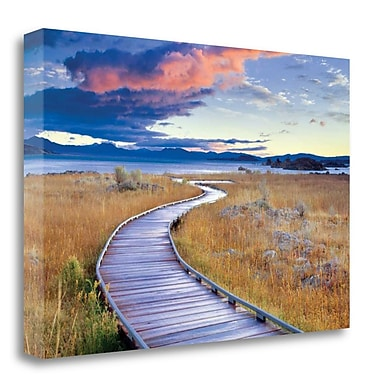 Tangletown Fine Art 'Pathway to Mono Lake' Photographic Print on Wrapped Canvas; 15'' H x 23'' W