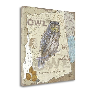 Tangletown Fine Art 'Owl Hoot' Graphic Art Print on Wrapped Canvas; 20'' H x 20'' W