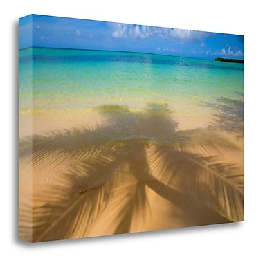 Tangletown Fine Art 'Palm Shadow Paradise' Photographic Print on Wrapped Canvas; 23'' H x 34'' W
