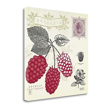 Tangletown Fine Art 'Raspberry Notes' Graphic Art Print on Canvas; 24'' H x 24'' W