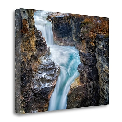Tangletown Fine Art 'River Dance I' Photographic Print on Canvas; 28'' H x 38'' W