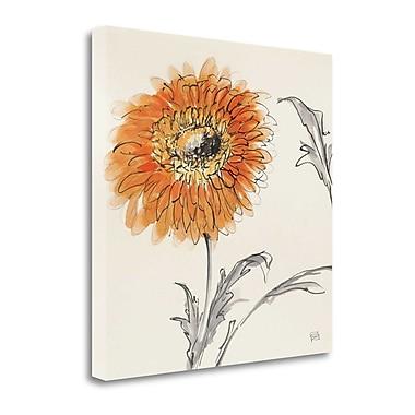 Tangletown Fine Art 'Orange Gerbera III' Print on Canvas; 20'' H x 20'' W