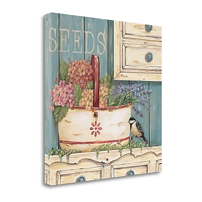 Tangletown Fine Art 'Seeds' Graphic Art Print on Canvas; 20'' H x 20'' W