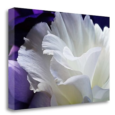 Tangletown Fine Art 'Lisianthus' Photographic Print on Canvas; 20'' H x 29'' W