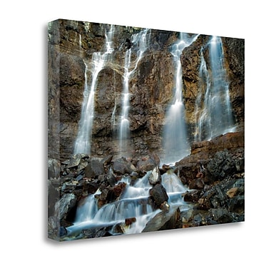 Tangletown Fine Art 'Love on the Rocks I' Photographic Print on Canvas; 35'' H x 47'' W
