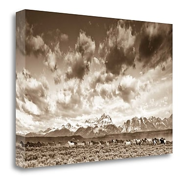 Tangletown Fine Art 'Wyoming Skies' Photographic Print on Canvas; 23'' H x 34'' W