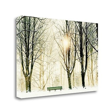 Tangletown Fine Art 'Too Cold To Sit' Photographic Print on Canvas; 20'' H x 29'' W