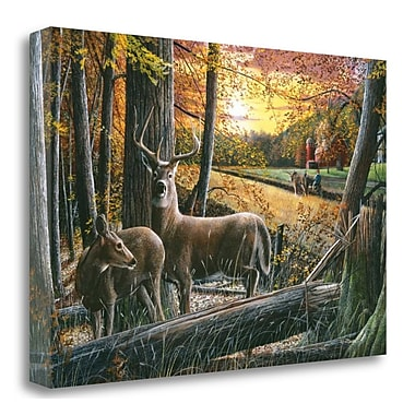 Tangletown Fine Art 'Autumn Harvest' Graphic Art Print on Wrapped Canvas; 24'' H x 36'' W